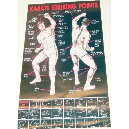 Karate Striking Point Poster